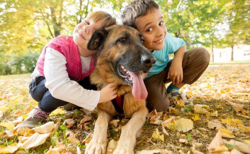 Comment faire cohabiter un chien avec des enfants : pourquoi faut-il cohabiter le chien avec les enfants ?